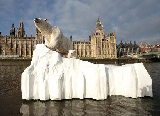 London Polar Bear