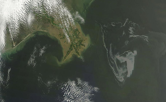 Oil Spill Near Mississippi Delta May 1st. The Moderate Resolution Imaging Spectroradiometer (MODIS) instrument on NASA's Terra satellite captured a natural-color image. The oil slick appeared as a tangle of dull gray on the ocean surface, made visible to the satellite sensor by the sun's reflection on the ocean surface. On May 1, most of the oil slick was southeast of the Mississippi Delta. Photo Credit: NASA MODIS Rapid Response Team