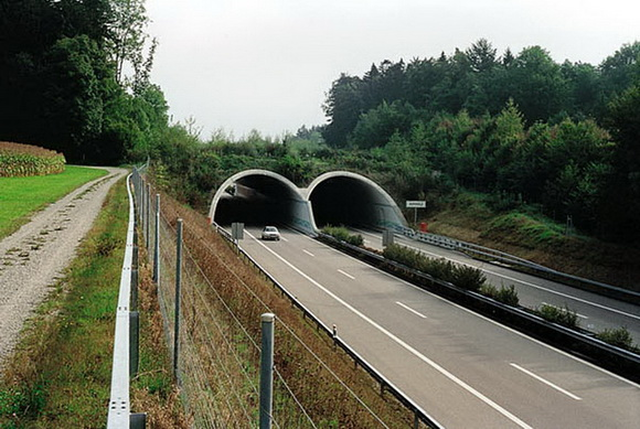 Wildlife overpass covered with vegetation