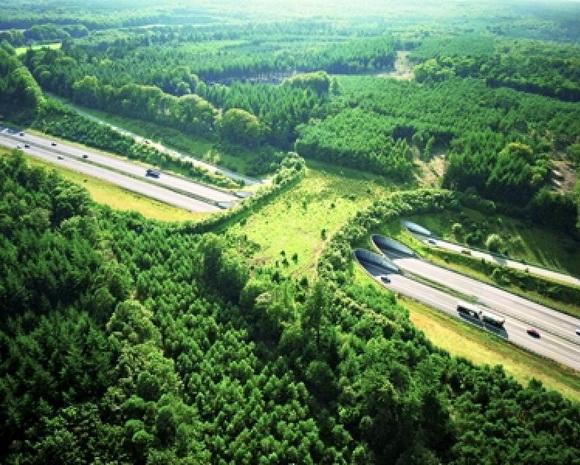 Ecoduct De Woeste Hoeve