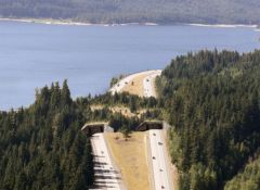 Wildlife crossing at Keechelus Lake