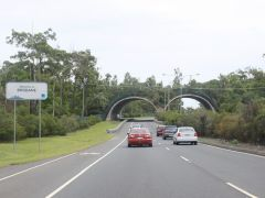 Wildlife crossing in Australia