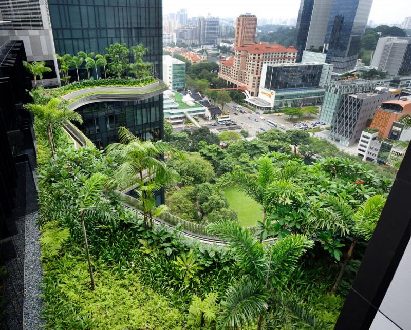 Park Royal sky garden