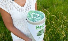 biodegradable Urn (image 2)