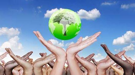 Being and Living Green How Everyone can Help our Environment Become Squeaky Clean.JPG