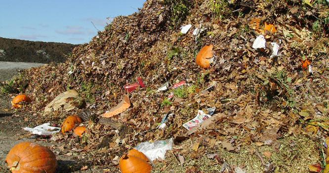 Organic_Wastes_Middle_East.jpg.14488b9bc