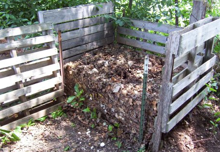 What to Know About Building Your Own Compost Pile at Home.PNG