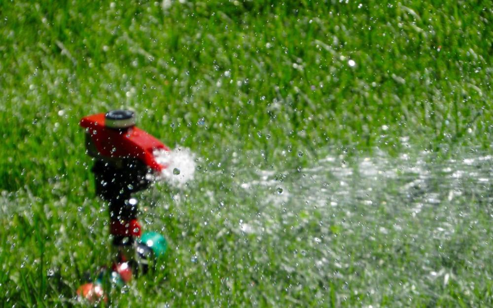 Water Waste.jpg