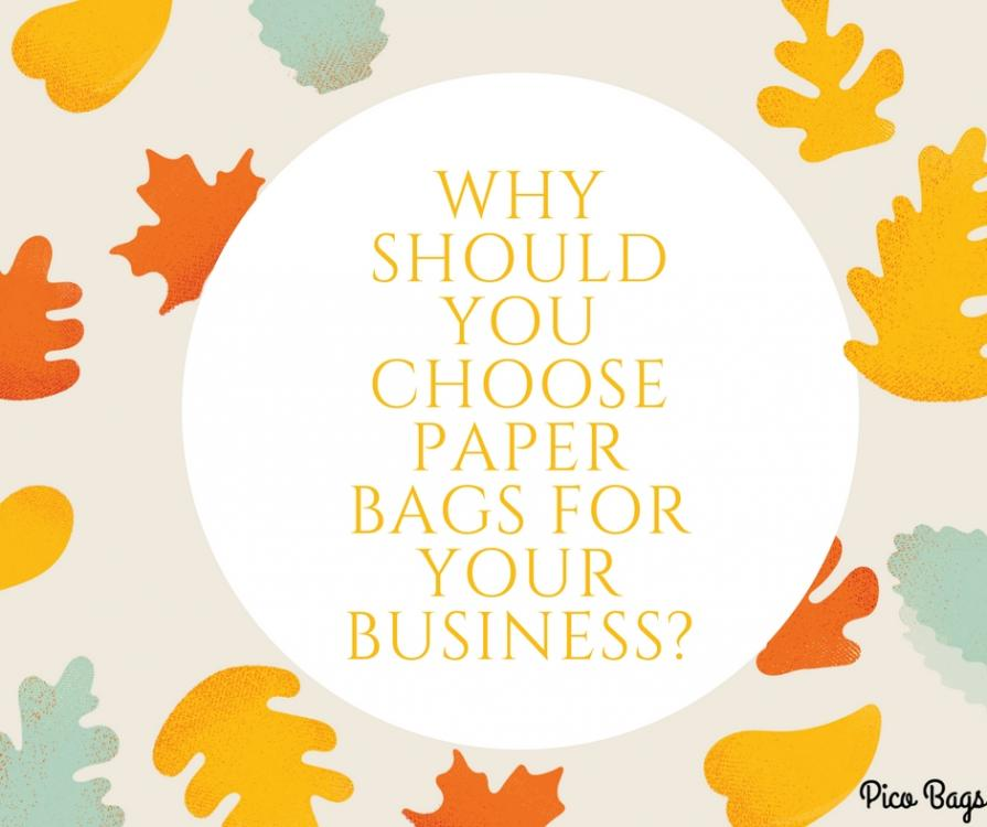 Why Should You Choose Paper Bags for Your Business.jpg
