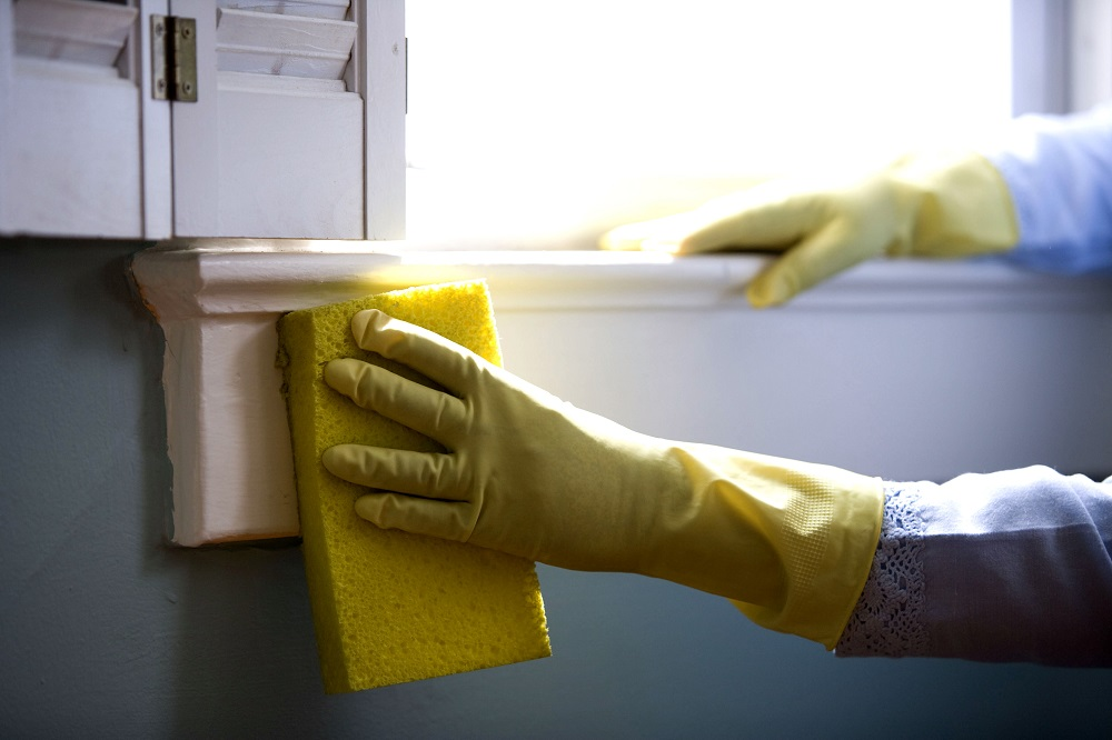 More Than Just Vinegar Top Spring Cleaning Tips for the Eco-Friendly Naturalist.jpg