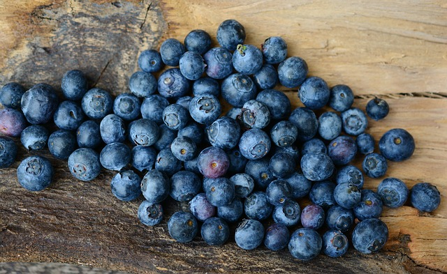 blueberries-2270379_640.jpg