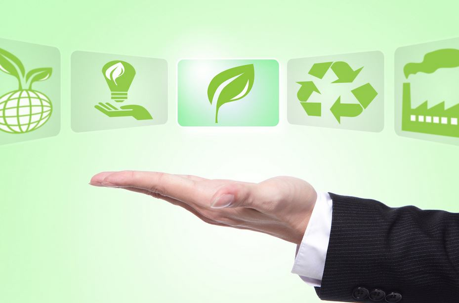 The Green Business How to Ensure Maximum Energy Savings.JPG