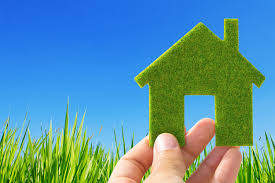 Green your house and family with these tips.jpg