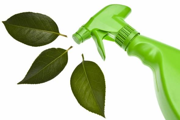 4 Reasons Your Office Should Be Using Green Cleaning Supplies.JPG