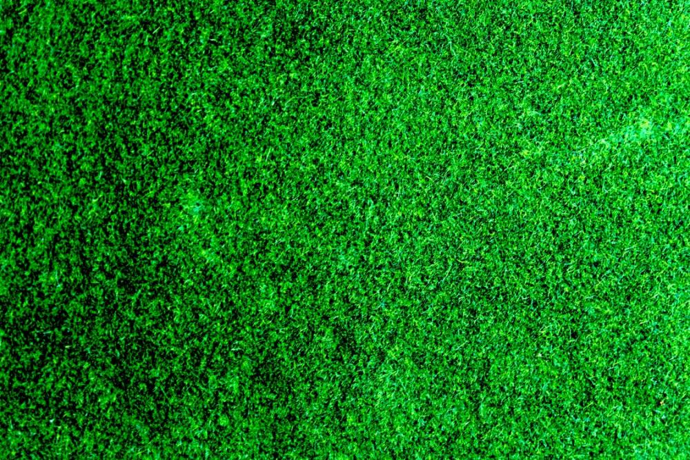 3 Simple Ways You Can Improve the Appearance of Your Yard.jpeg