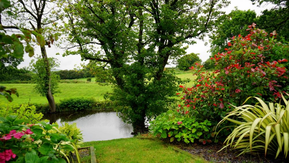 4 Landscaping Tips That Will Save You Time and Money on Your Personal Property.jpeg