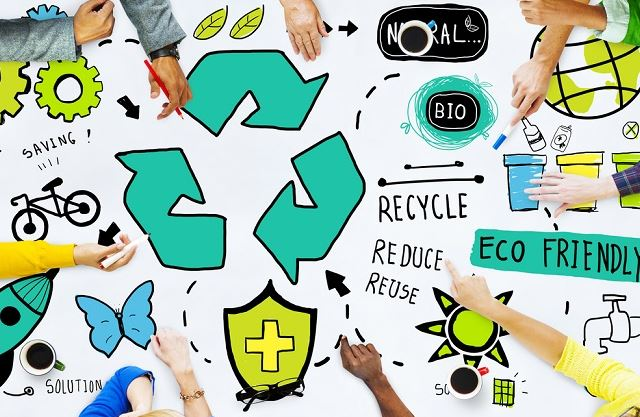 The Green Business How Companies Can Help Clean up the Environment.JPG