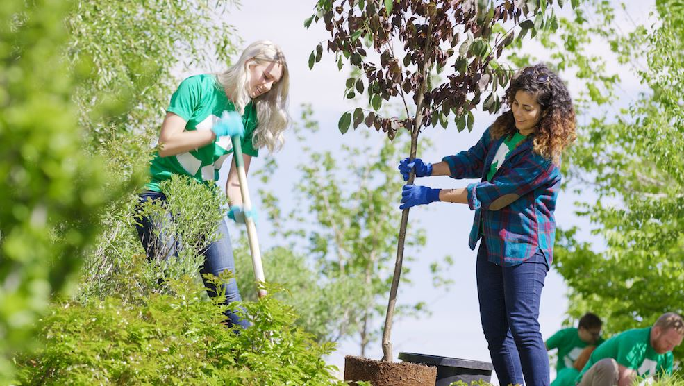 Make Your Neighborhood Green 5 Ways You Can Help Clean up Your Community.JPG
