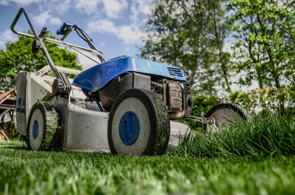 Pros and Cons of Artificial Turf vs a Grass Lawn.jpg